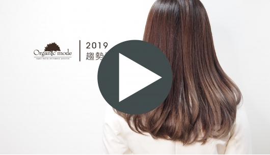 2019趨勢染髮 v.s. 盧志遠