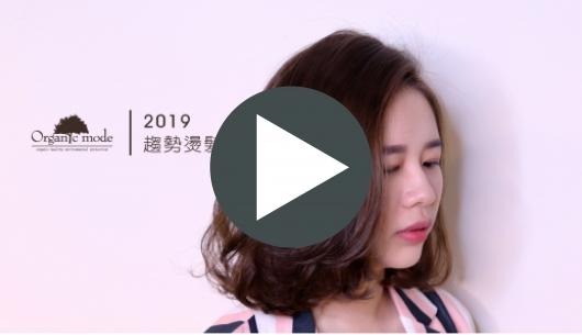 2019趨勢燙髮 v.s. Coley